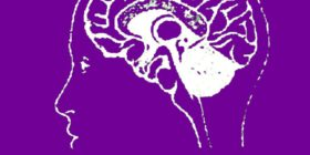 Corso di formazione tecnica cranio sacrale – Corso in apertura – 10 febbraio 18