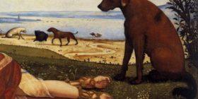Tuina per gli animali: la mia esperienza – di Francesco Saggia